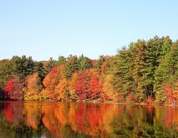 アメリカ北東部の紅葉ツアー情報あります。
