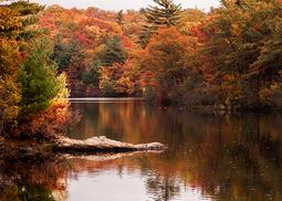 マサチューセッツ州、紅葉シーズンの到来