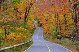 マサチューセッツ西部おすすめの紅葉ドライブコース7選